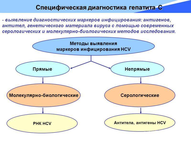 Что это гепатит С. Все о гепатите С