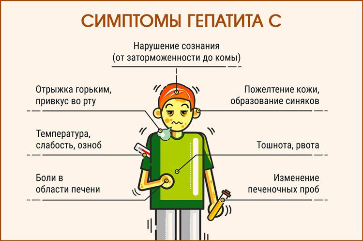 Какие формы есть гепатита С у взрослых. Симптомы острого гепатита С