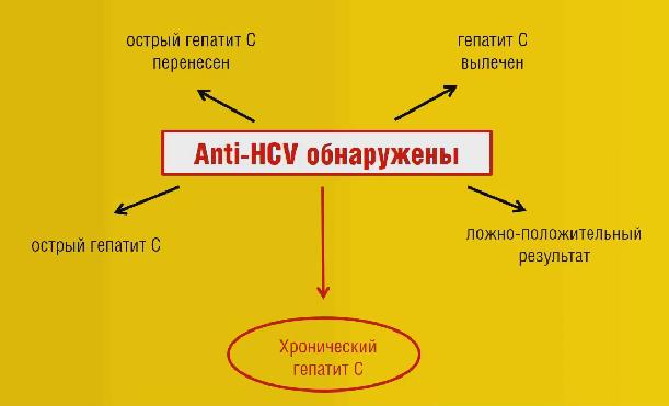 Анализы до лечения гепатита С, во время и после