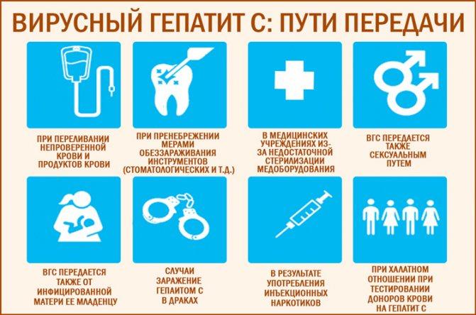 Первые признаки, симптомы и лечение гепатита С