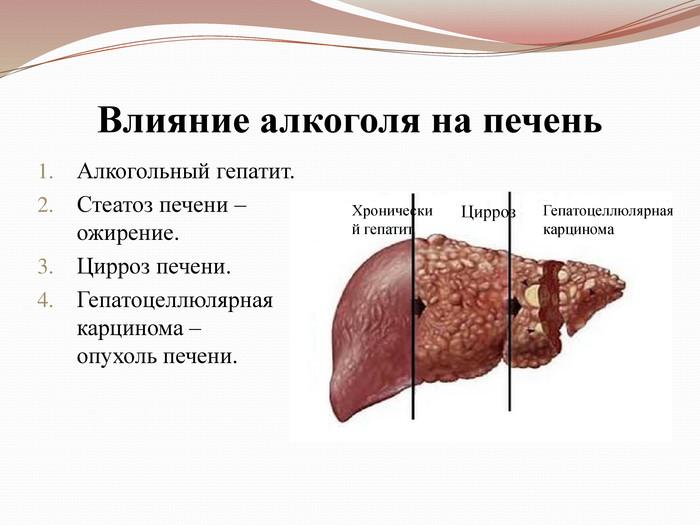 Восстановление печени после лечения вирусного гепатита с
