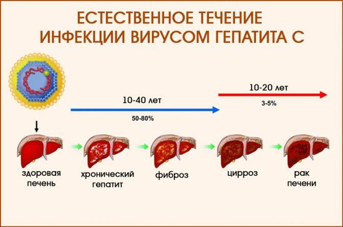 Жизнь после лечения вирусного гепатита с