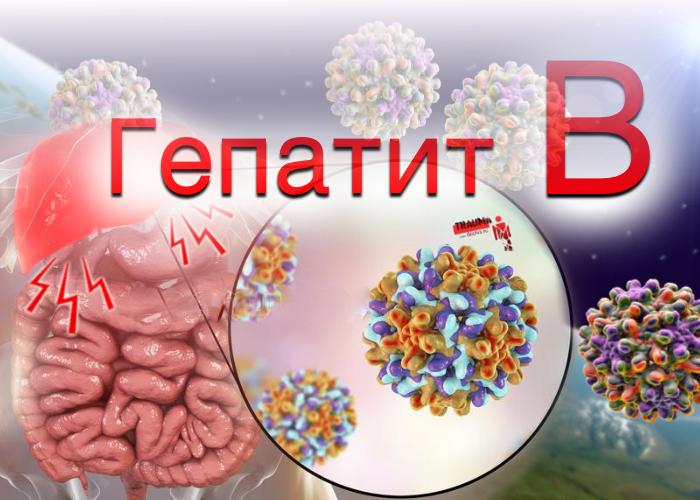 Сколько живут при вирусном гепатите В