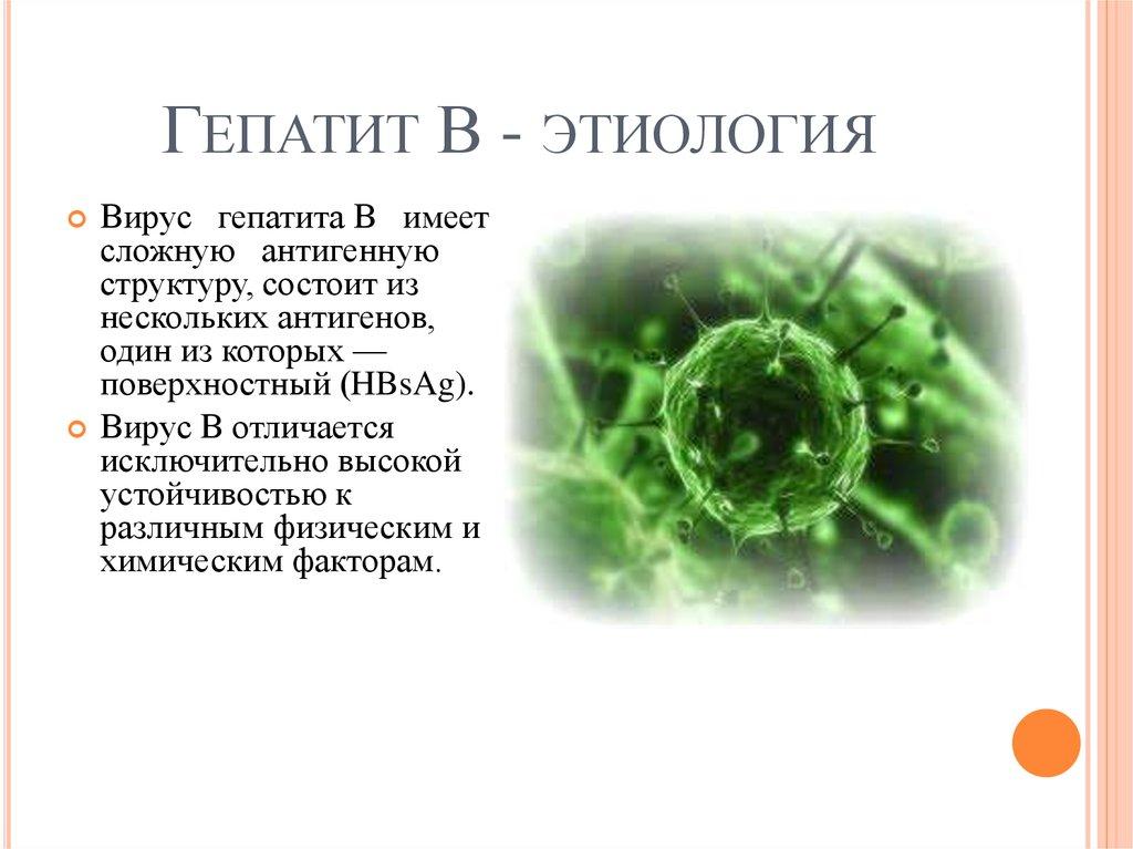 Пути передачи гепатита В